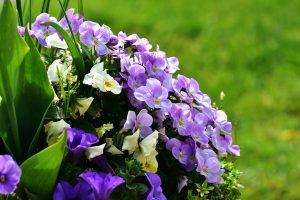 fleur-mariage-cérémonie-couple-parme-violet-blanc-champêtre-bohème-chic-ldmcreateur-fr