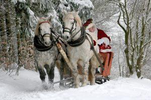 noel-christmas-neige-blanc-soiree-LDM-Createur-fr