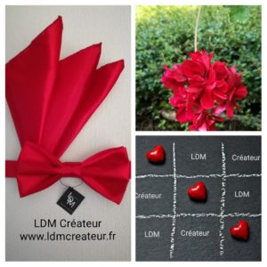 Noeud-papillon-pochette-mariage-rouge-Var-www-ldmcreateur-fr