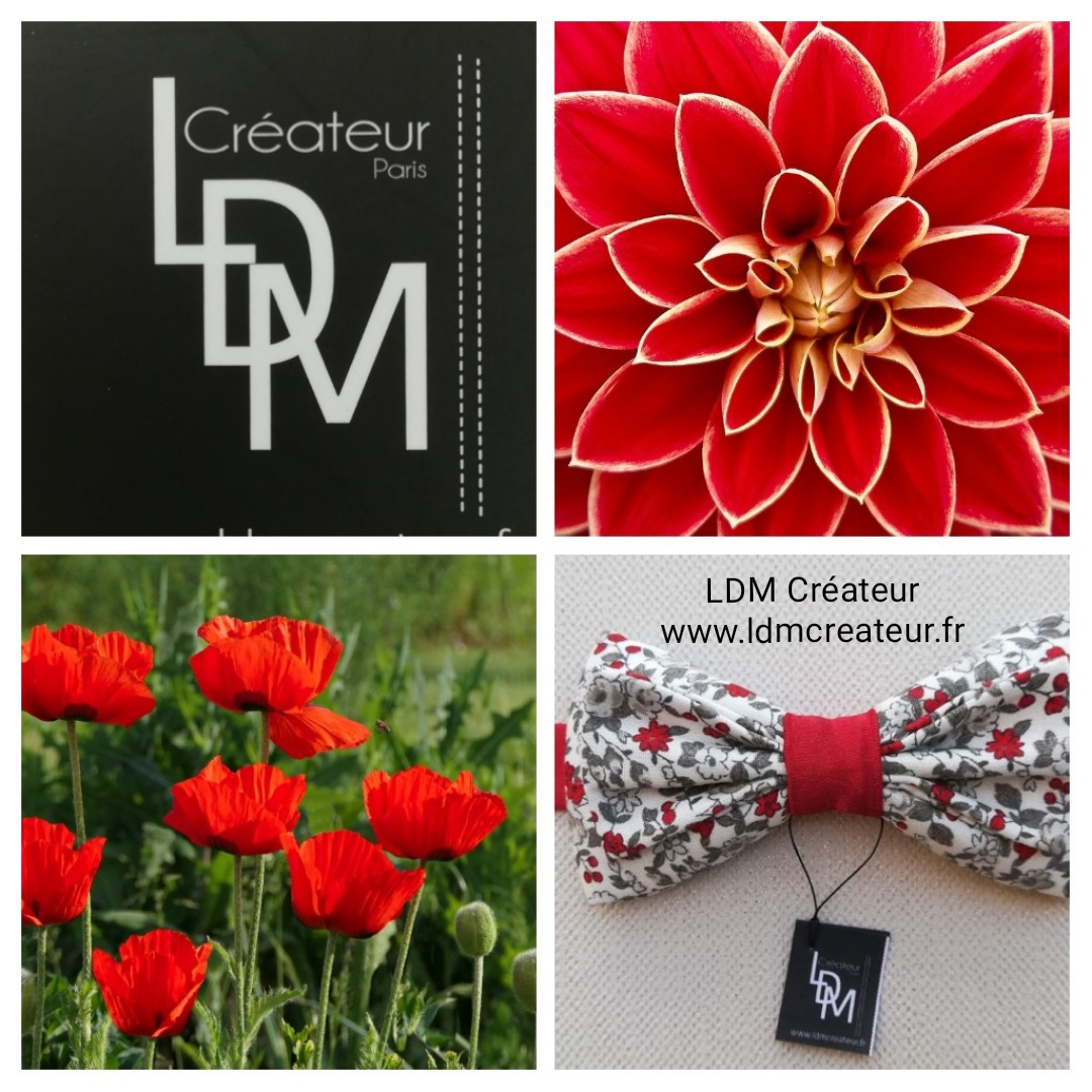noeud-papillon-liberty-rouge-www-ldmcreateur-fr